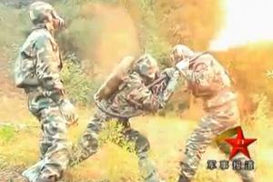 Ο κινεζικός στρατός στον αγώνα κατά των... σφηκών