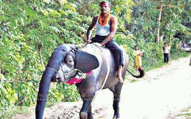 diaforetiko.gr : funnyIndia4 Μόνο στην Ινδία μπορεί να συμβούν αυτά...