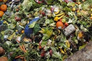 Στα σκουπίδια καταλήγουν 1,3 δισ. τόνοι τροφίμων κάθε χρόνο παγκοσμίως