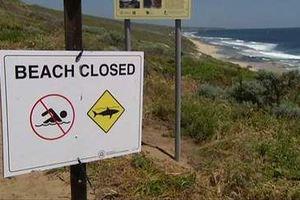 Δεκαεπτάχρονη νεκρή από επίθεση καρχαρία στην Αυστραλία
