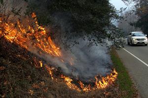 Στις φλόγες η Καλιφόρνια
