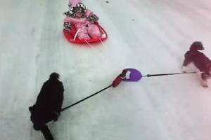 Η χαρά του χιονιού