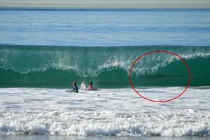 Photo- bomb από έναν… λευκό καρχαρία