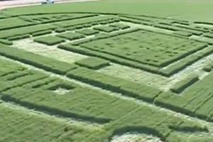Μυστηριώδες σημάδι σε φάρμα στην Καλιφόρνια