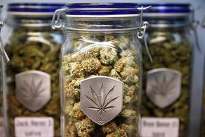 Η Νεμπράσκα καταγγέλλει το Κολοράντο για τη νομιμοποίηση της μαριχουάνας