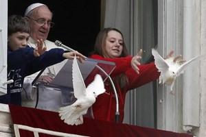 Κοράκι επιτέθηκε στο περιστέρι του Πάπα
