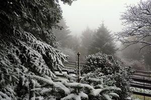 Στα «λευκά» τα ορεινά της Χαλκίδας