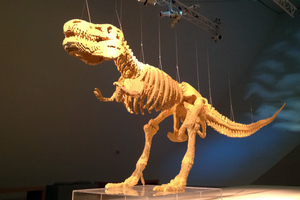 Ο μεγαλύτερος τυραννόσαυρος από Lego