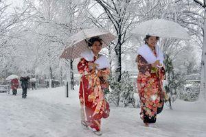 Τουλάχιστον 12 νεκροί από νέα σφοδρή χιονόπτωση στην Ιαπωνία