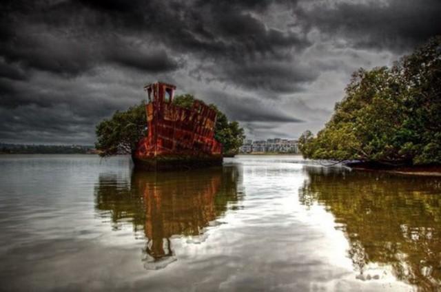 diaforetiko.gr : ploio1 Το πλωτό δάσος του Σίδνεϊ  Μοιάζει εξωπραγματικό