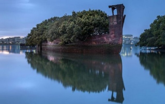 diaforetiko.gr : ploio2 Το πλωτό δάσος του Σίδνεϊ  Μοιάζει εξωπραγματικό
