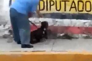 Χτύπησε τον σκύλο και αμέσως... τιμωρήθηκε