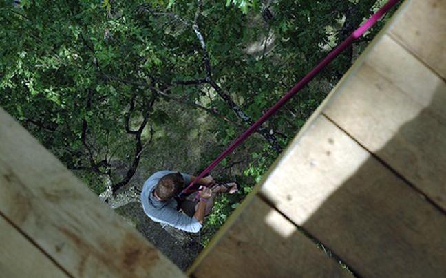 Woodpecker Hotel:  Ένα οικολογικό καταφύγιο στην καρδιά ενός πάρκου...ένα περίεργο κατάλυμα!
