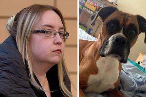 Ποινή φυλάκισης σε 27χρονη που άφησε το σκύλο της να πεθάνει
