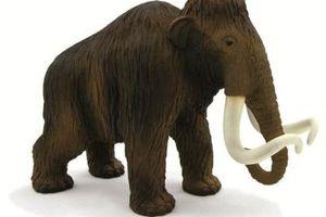 Μαμούθ και ελέφαντες θα κατασκευάσουν παιδιά του δημοτικού στη Σιάτιστα
