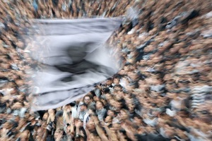 «Στοπ» της Αστυνομίας στους οπαδούς του ΠΑΟΚ για Λαμία