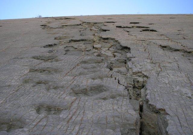 Τα χνάρια των δεινοσαύρων στη Βολιβία