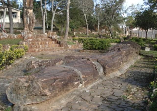 Το παλαιοντολογικό πάρκο Paleorrota στη Βραζιλία