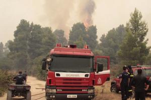Υπό έλεγχο φωτιά κοντά στον Κρόκο Κοζάνης