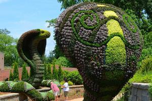 Τα θαυμαστά έργα στον βοτανικό κήπο της Ατλάντα