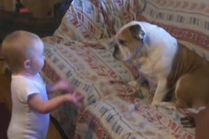 Όταν το μωρό έχει... σοβαρή διαφωνία με το σκύλο