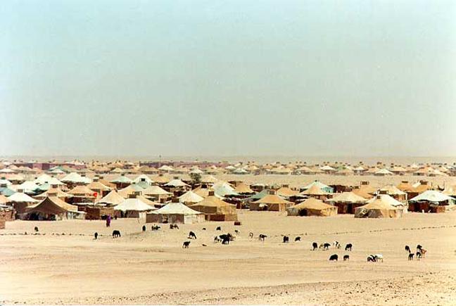 Δυτική Σαχάρα