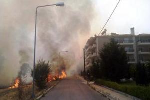 Κινδύνεψαν σπίτια από φωτιά στην Κοζάνη