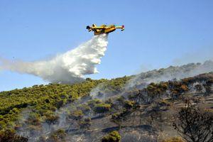 Ξέσπασε δασική πυρκαγιά στο Στεφάνι Κορινθίας