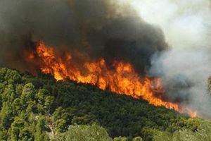 Υπό έλεγχο πυρκαγιά στο Ληξούρι