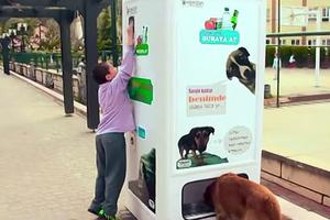 Η ανακύκλωση… ταΐζει τους σκύλους
