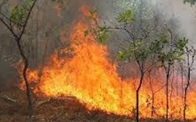 Μαίνεται από χθες πυρκαγιά στην Άνδρο