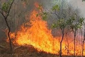 Πυρκαγιά στην Κίσσαμο