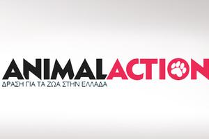 Ψηφίστε την Animal Action