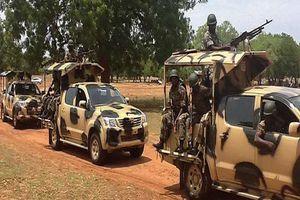 Βίντεο-σοκ με στρατιώτες να σφάζουν αντάρτες στη Νιγηρία