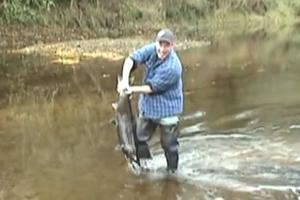 Ψαρεύοντας με τα χέρια