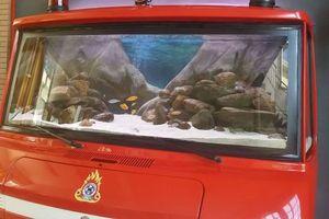 Ένα ενυδρείο μέσα σε πυροσβεστικό όχημα!