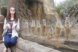 zoo-animals-001-08262014