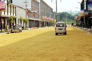 Δρόμος χωρίς μποτιλιάρισμα, αλλά γεμάτος… ρύζι