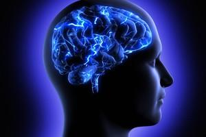 Οι ξένες γλώσσες βοηθούν στην καλύτερη λειτουργία του εγκεφάλου