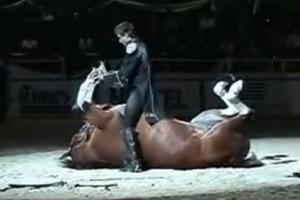 Ένα πολύ ταλαντούχο άλογο