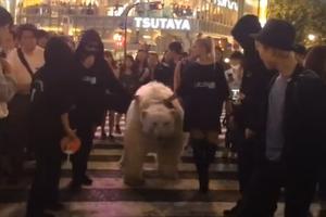 Έβγαλε την πολική αρκούδα βόλτα