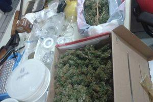 Πλήρες εργαστήριο καλλιέργειας κάνναβης στο Περιστέρι