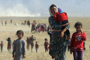 «Απόπειρα γενοκτονίας των Γιαζίντι από το Ισλαμικό Κράτος»
