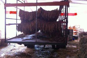 Εκατοντάδες κιλά αδασμολόγητου καπνού κατασχέθηκαν στη Φθιώτιδα