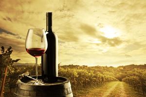 Τα ακριβότερα κρασιά