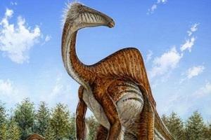 Απολιθώματα αποκαλύπτουν έναν πολύ περίεργο δεινόσαυρο