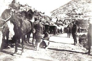Τα μόνοπλα του Ελληνικού Στρατού