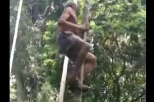 Αυτός ο παππούς σκαρφαλώνει σα μαϊμού