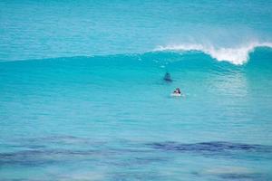 Καρχαρίας επιτίθεται σε σέρφερ