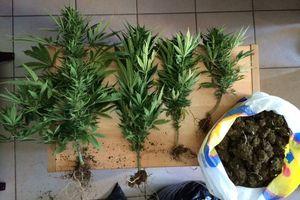 Χειροπέδες σε 54χρονο στη Ζάκυνθο για εμπόριο ναρκωτικών